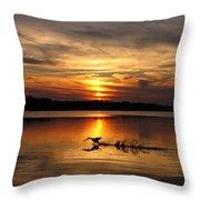 Take Off Forge Pond Throw Pillow