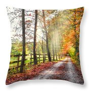 Take The Back Roads Throw Pillow