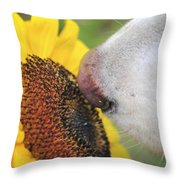 Take Time To Smell The Sunflowers Throw Pillow