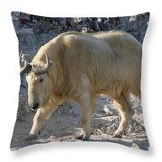 Takin  China Throw Pillow