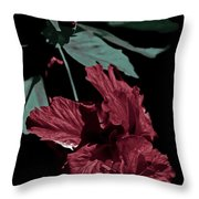 Taking A Bow Throw Pillow
