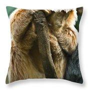 Taking A Nap Throw Pillow