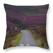 Taking A Stroll Throw Pillow