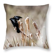 Taking Flight Throw Pillow