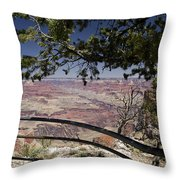 Taking In The Grand View Throw Pillow