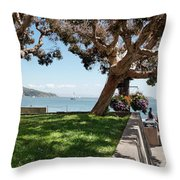 Taking In The View Throw Pillow