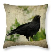 Blackbird Is Taking It All In Throw Pillow