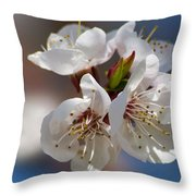 Taking My Breath Away - Featured 3 Throw Pillow