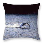 Taking Off Swan Throw Pillow