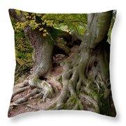 Taking Root Throw Pillow