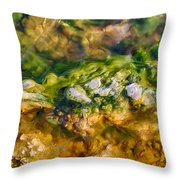 Taking The Beach Hot Springs Throw Pillow