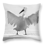 Taking The Plunge - Pelican - Bathroom Throw Pillow
