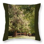 Taking Time Out Throw Pillow