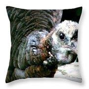 Talk Turkey Throw Pillow