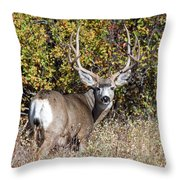 Tall And Handsome Throw Pillow