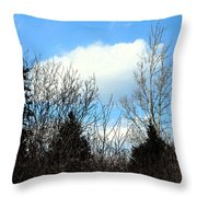 Tall Birch Throw Pillow