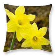 Tall Daffodils Throw Pillow