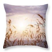 Tall Grass At Sunset Throw Pillow