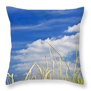 Tall Grass On Sand Dunes Throw Pillow by Elena Elisseeva