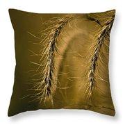 Tall Grass Summer's End Throw Pillow