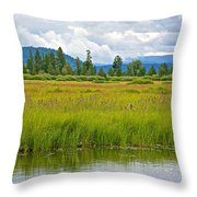 Tall Grasses In Swan Lake In Grand Teton National Park-wyoming Throw Pillow