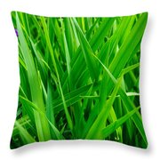 Tall Green Grass Throw Pillow