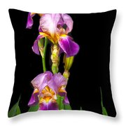Tall Iris Throw Pillow