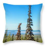 Tall Pine Trees And Hilly Background Throw Pillow