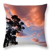 Tall Tree Against A Dramatic Sunset Clouds Sky Throw Pillow