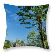Tall Tree And Temple Throw Pillow