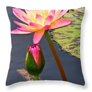 Tall Waterlily Beauty Throw Pillow