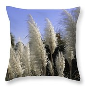 Tall Wispy Pampas Grass Throw Pillow