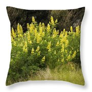 Tall Yellow Lupin Throw Pillow