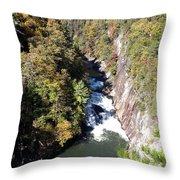 Tallulah Autumn Throw Pillow