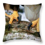 Talons Throw Pillow