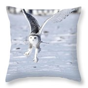 Talonted Throw Pillow