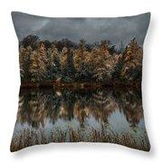 Tamarack Reflections Throw Pillow