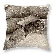 Tamarindo Whole Sepia Throw Pillow