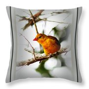 Tanager 4296-ttp Throw Pillow