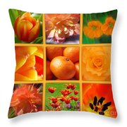 Tangerine Dream Window Throw Pillow by Joan-Violet Stretch