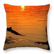 Tangerine Moonlight Throw Pillow by Karen Wiles