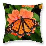 Tangerine Twosome Throw Pillow