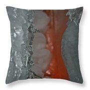 Tangerine Vein Throw Pillow