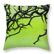 Tangled 1 Throw Pillow