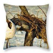 Tangled Driftwood Throw Pillow