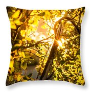Tangled Flare Throw Pillow