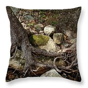 Tangled Throw Pillow