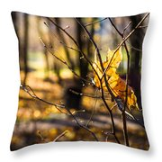 Tangled Sun - Featured 3 Throw Pillow