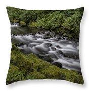Tanner Creek Throw Pillow