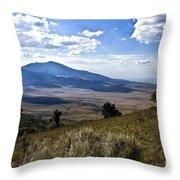 Tanzania Scenery Throw Pillow